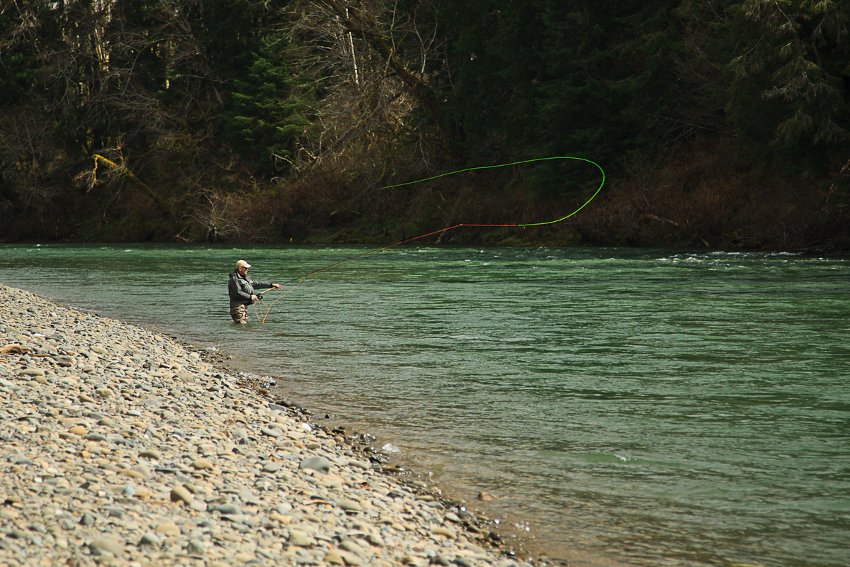 Blog posts in hoh rainforest big hole lodge for Sol duc river fishing